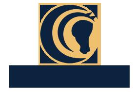 Logo 4D Arabians